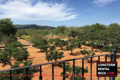 Long-term-rental-Ibiza-Villa-Atzarro--10