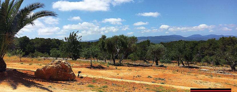 Long-term-rental-Ibiza-Casa-T-15