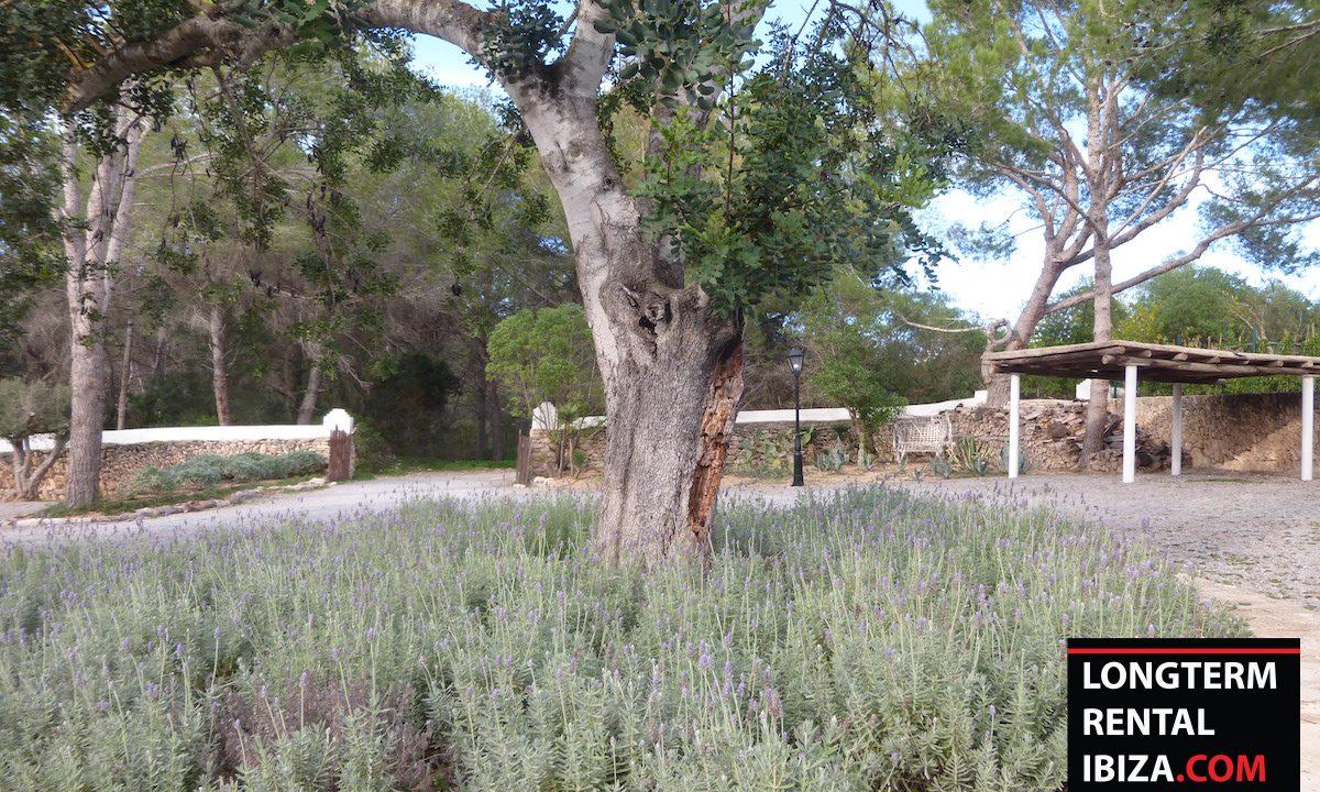 Long term rental Ibiza - FInca Month Blanc 7